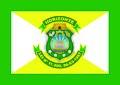 Bandeira Horizonte oficial.jpg