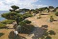 Bandoko garden Wakaura03n4272.jpg