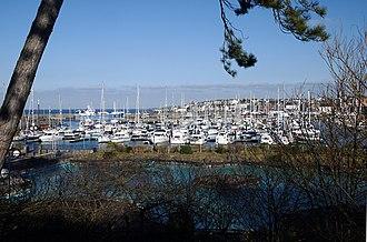 Bangor Marina - Bangor Marina as seen from a footpath above Pickie