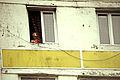 Batumi (14713205634).jpg