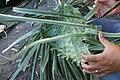 Bayong weaving in Bulusan.jpg