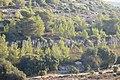 Bayt Itab natural park - panoramio (13).jpg