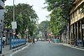 Beadon Street - Kolkata 2015-11-09 4577.JPG