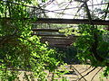 Beatrice Hoyt Street bowstring bridge from below E 1.JPG