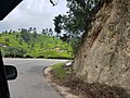 Beautiful roads of western ghats.jpg