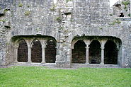 Bective Abbey 03