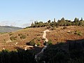 Beit She'arim - Cave of the Crypts, view from the Menorah complex caves (2).jpg