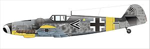Gerhard Barkhorn - Gerhard Barkhorn's Messerschmitt Bf 109 G-6 of Stab II./JG 52, November 1943