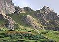 Binevenagh Nature Reserve - geograph.org.uk - 1553517.jpg
