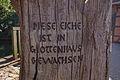 Blasek-Eiche am Kloster Wienhausen IMG 2101.jpg