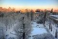 Bleichröderpark im Winter.jpg