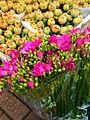 Bloemenmarkt 2006 (2).jpg