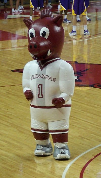 Boss Hog entertains fans at a basketball game in 2010. Boss Hog UArk.jpg