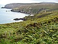 Boswednack over Porthglaze and Pendour Coves glimpse Zennor Head - panoramio.jpg