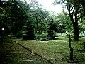 Botanical garden in Poznań10.JPG