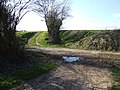 Boudica's Way Crossing Wash Lane - geograph.org.uk - 364409.jpg