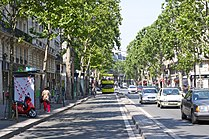 Boulevard Saint-Germain, Paris June 2010.jpg