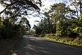 Bowral NSW 2576, Australia - panoramio (128).jpg