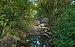 Boyne Stream, Cabrières, Hérault 01.jpg
