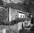 Brčinova hiša v Ospu 1949.jpg