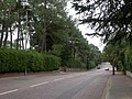 Branksome Park, Canford Cliff Road - geograph.org.uk - 1502882.jpg