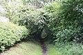 Bridleway beyond Greenacres - geograph.org.uk - 1310955.jpg