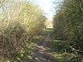 Bridleway to Burton Joyce - geograph.org.uk - 1758041.jpg