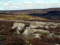 Bruston Croft Moors - geograph.org.uk - 413967.jpg