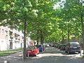 Bruxelles - Schaerbeek - Avenue Philippe Thomas.JPG
