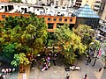Bulevar de Sabana Grande - arquitectura y vegetación 2018.jpg