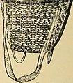 Bulletin (1907) (20238422968).jpg