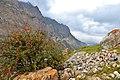 Bulungu. Mulongesha the site. 4.jpg