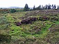 Bumps on the moor - geograph.org.uk - 1320823.jpg