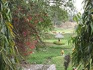 Burnpur Nehru Park 3