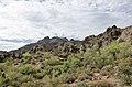 Butcher Jones Trail to Pinter's Point Loop, Tonto National Park, Saguaro Lake, Ft. McDowell, AZ - panoramio (59).jpg