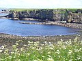 By Little Clett, Brough - geograph.org.uk - 486820.jpg