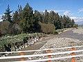 CHILE - panoramio - Audolina Ines Menese… (6).jpg