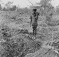 COLLECTIE TROPENMUSEUM Een jongen met yam knollen op een aangeplant veld TMnr 20016983.jpg