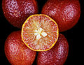 CSIRO ScienceImage 8011 Blood limes.jpg