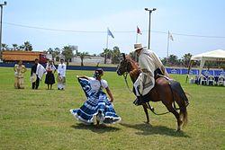 Concurso de caballos de Paso en la Asociación de Criadores de Caballos de Paso de Víctor Larco Herrera