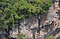 CachoeiraCaracol LuliHata 09.jpg