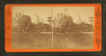 Cafe, Centennial Grounds, from Robert N. Dennis collection of stereoscopic views.png