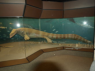 Morden, Manitoba - The Canadian Fossil Discovery Centre.