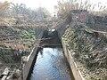 Canal de la Infanta a Molins de Rei P1040245.jpg