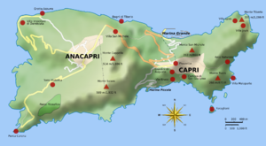 History of Capri - A topographic map of Capri showing the locations of two Tiberian villas: Villa Jovis (NE) and Villa Damecuta (NW)