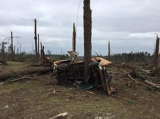 Tornado outbreak of March 3, 2019 - Car wrapped around a tree in Beauregard, Alabama.