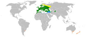 Carduelis chloris distribution map.png