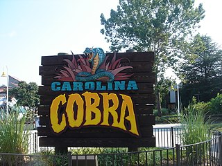 The Flying Cobras roller coaster