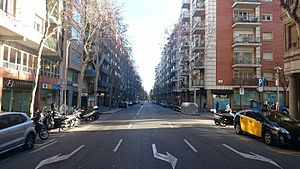 Carrer d'Aribau (tram final-Via Augusta).jpg