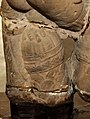Caturvyuha, vasudeva's mace held by one of his supplementary hands.jpg